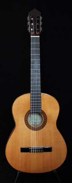 Classical Guitar APC Flamenco 9F