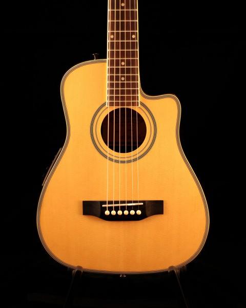 Kirkland Traveller Guitar